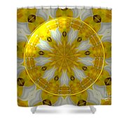 Daffodil And Easter Lily Kaleidoscope Under Glass Shower Curtain