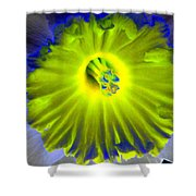 Daffodil Dreams - Photopower 1904 Shower Curtain