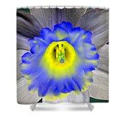 Daffodil Dreams - Photopower 1919 Shower Curtain