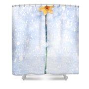Daffodil In Snow Shower Curtain