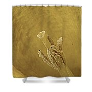 Daffodil Macro Shower Curtain