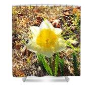 Daffodil Under Water Shower Curtain