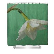 Daffodilon Green 2 Shower Curtain