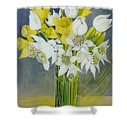 Daffodils And White Tulips In An Octagonal Glass Vase Shower Curtain