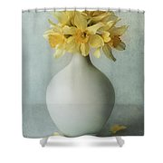 Daffodils In A White Flowerpot Shower Curtain