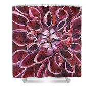 Dahlia - Closeup 2 Shower Curtain
