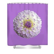 Dahlia Shower Curtain