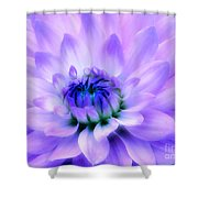 Dahlia Dream Shower Curtain