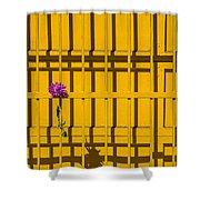 Dahlia In Yellow Gate Shower Curtain