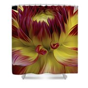 Dahlia Red Yellow Shower Curtain