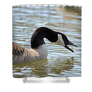 Daily Bread Shower Curtain