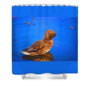 Daily Oil Treatment  Shower Curtain