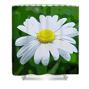 Daisey Flower - Looks Like A Painting Shower Curtain