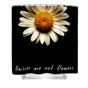 Daisies Are Not Flowers Fractal Version Shower Curtain
