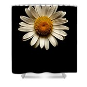 Daisies Are Not Flowers No Text Shower Curtain