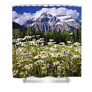 Daisies At Mount Robson Shower Curtain by Elena Elisseeva