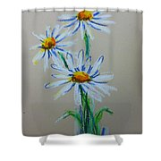 Daisies For You Shower Curtain