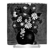 Daisies In Black And White Shower Curtain