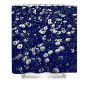 Daisies In Blue Fire Shower Curtain