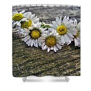 Daisies In Wreath Shower Curtain