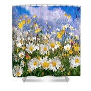 Daisies On A Hill - Impressionism Shower Curtain