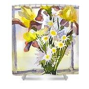 Daisies With Yellow Irises Shower Curtain