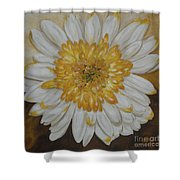 Daisy-2 Shower Curtain