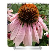 Daisy And Friend Shower Curtain