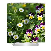 Daisy And Pansy Mix Shower Curtain
