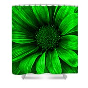 Daisy Daisy Neon Green Shower Curtain