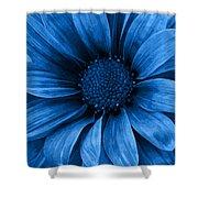 Daisy Daisy Pure Blue Shower Curtain