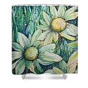 Daisy Days Shower Curtain