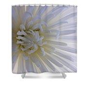 Daisy Dream Glow Shower Curtain