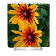 Daisy Duo Shower Curtain