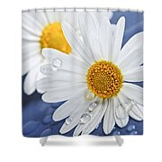 Daisy Flowers With Water Drops Shower Curtain