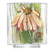 Daisy Girl Shower Curtain by Sherry Harradence