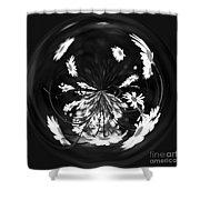 Daisy Globe Shower Curtain