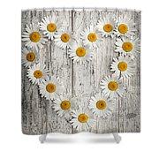 Daisy Heart On Old Wood Shower Curtain
