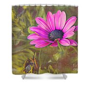 Daisy In Pink Shower Curtain