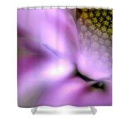 Daisy Mirage Shower Curtain
