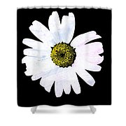 Daisy On Black Shower Curtain