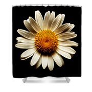Daisy On Black Square Fractal Shower Curtain