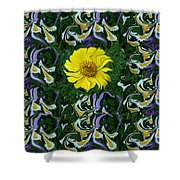 Daisy Poster Shower Curtain