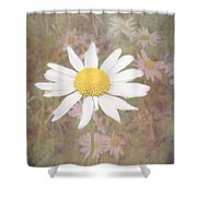 Daisy Textured Shower Curtain