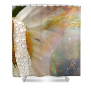 Daisy With Hubble Cosmos Shower Curtain