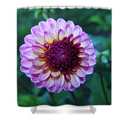 Dalhias At The Gorge White House In Hood River Oregon Shower Curtain