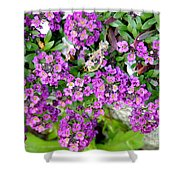 Dance Of Flowers Shower Curtain