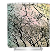 Dance Of Spring Shower Curtain