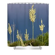 Dance Of The Yucca Shower Curtain