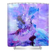 Dance With The Sky Shower Curtain